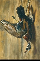 PLEISSNER:  STILL-LIFE (WOOD DUCK)</a><br><b>- SOLD</b>