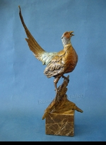 PHEASANT:  TOP OF THE MORNING