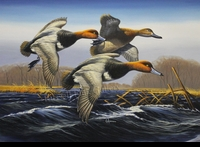 ANDERSON: Original Entry for the 1987 Federal<br>Duck Stamp Print</a><br><b>- SOLD</b>