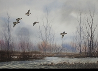 HAGERBAUMER:  LATE SEASON GREENWINGS</a><br><b>- SOLD</b>