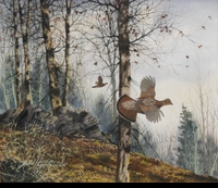 HAGERBAUMER: FEATHERED THUNDER<br>- RUFFED GROUSE</a><br><b>- SOLD</b>