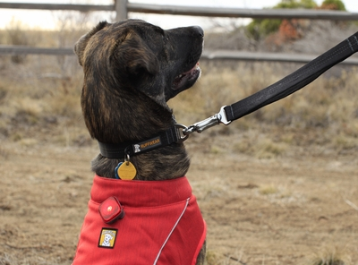 Ruffwear Beacon Dog Safety Light