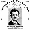Pasquale Amato, Vol. IV                  (Truesound Transfers 3080)