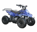 COOLSTER / Tao XS 110cc Youth Quad/ATV - Calif Legal Model