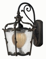 Hinkley 1420-AI Sorrento Traditional Outdoor Wall Sconce with Fluorescent Option - 17 inches tall