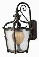 Hinkley 1424-AI Sorrento Traditional Outdoor Wall Sconce with Fluorescent Option - 21 inches tall