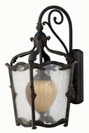 Hinkley 1425-AI Sorrento Traditional Outdoor Wall Sconce with Fluorescent Option - 27 inches tall