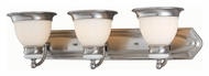 Lite Source LS16423PS/FRO Carter 30 Inch Wide Polished Steel Finish Vanity Light Fixture