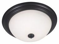 Kenroy Home 80369ORB Triomphe Oil Rubbed Bronze Transitional Fluorescent Ceiling Light Fixture