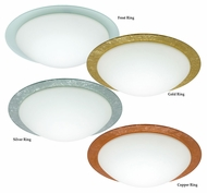 Besa Ring Transitional 15 Inch Diameter Medium Ceiling Light Fixture
