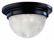 Hudson Valley 4418 Winfield Contemporary Large 17 Inch Diameter 9 Inch Tall Ceiling Lamp
