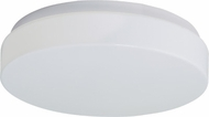 Lite Source LS5415WHT Bridgit Large 14  Contemporary 2-lamp Flush Mount Ceiling Light Fixture
