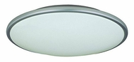 Lite Source LS5411 Pegeen Contemporary 17 Ceiling Lamp