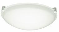 PLC Cloud Fluorescent Ceiling Light with White Clips