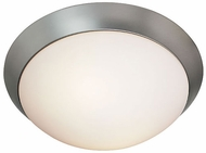 Access 206-FLUSH 206 Brushed Steel FlushMount Ceiling Light
