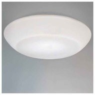 Zaneen D82005 Delphinia Large Contemporary Flush-Mount Ceiling Light