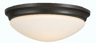 Feiss FM272 Barrington 2 Light 14 inch Flushmount Ceiling Fixture