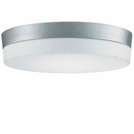 Zaneen D82060 Flan Large Modern Flush-Mount Ceiling Light