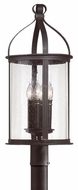 Troy P9475FBK Scarsdale Traditional Outdoor Lighting Post - 12 inches wide