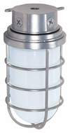 Nuvo 76626 Industrial Style Surface Mount Large Metallic Silver 11 Inch Tall Outdoor Ceiling Lighting