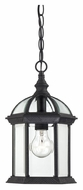 Nuvo 604979 Boxwood Textured Black Finish 8 Inch Wide Traditional Pendant Lighting Fixture