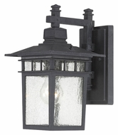 Nuvo 604953 Cove Neck 11 Inch Tall Seeded Glass Outdoor Light Sconce - Textured Black