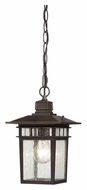 Nuvo 604955 Cove Neck Outdoor 12 Inch Tall Seeded Glass Pendant Light - Rustic Bronze