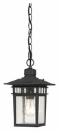 Nuvo 604956 Cove Neck 12 Inch Tall Textured Black Finish Outdoor Hanging Lamp