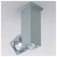 Zaneen D92029 Dau Spot 2-light Contemporary Spotlight Ceiling Light