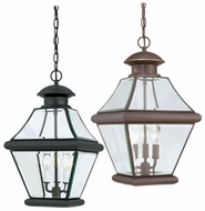 Quoizel RJ1911 Rutledge Large 19.5 Inch Tall Hanging Lantern Outdoor Ceiling Light Fixture