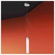 Zaneen D21027 Olly Large Contemporary Mini Pendant