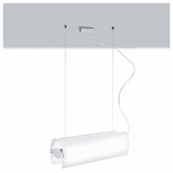 Zaneen D11046 Fly Contemporary Style Pendant Light