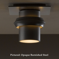 Hubbardton Forge 36-4901 Twilight Flush Mount Outdoor Ceiling Lighting - Wrought Iron