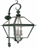 Troy B9624NB Townsend Traditional Outdoor Wall Lantern - 17 inches wide