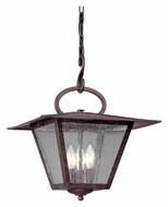Troy F2956 Potter Outdoor Pendant Light