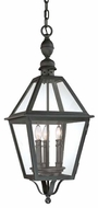 Troy F9627NB Townsend Traditional Outdoor Hanging Pendant - 11 inches wide