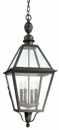 Troy F9628NB Townsend Traditional Outdoor Hanging Pendant - 13.5 inches wide