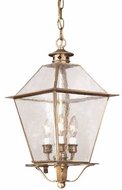 Troy FCD8956NAB Montgomery Outdoor Pendant Light - 10.25 inches wide