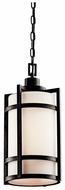 Kichler 49124 Camden Cylinder 9.5 Inch Diameter Outdoor Drop Ceiling Light Fixture