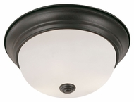 Trans Globe 13719 Transitional 15 Inch Diameter Large Flush Lighting Fixture