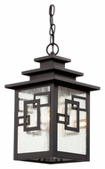 Trans Globe 40184 WB Weathered Bronze Finish 9 Inch Diameter Outdoor Hanging Light