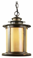 Trans Globe 40213 ABZ Outdoor 9 Inch Diameter Antique Bronze Hanging Pendant Light