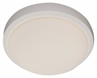 Trans Globe PL-13880 WH Small Damp-Rated 11 Inch Wide Ceiling Light - White