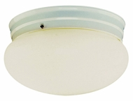 Trans Globe PL-3620-1 Flush Mount 10 Inch Diameter Brushed Nickel Ceiling Lighting