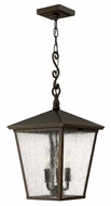 Hinkley 1432RB Trellis Regency Bronze Finish 11 Inch Diameter Outdoor Drop Lighting