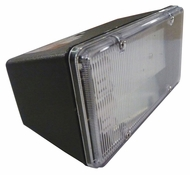 AFX TPDW213BKPLT 7 Inch Long Exterior Black Finish Landscape Flood Light
