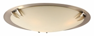 PLC 14896-SN Paralline Contemporary Flush Mount Lighting - Large