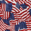 AMERICA & RED, WHITE & BLUES