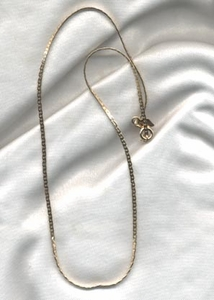 "18"" Goldtone Chain - Hostess Gift"