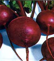 Beets - Detroit Red Seeds